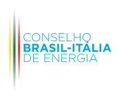 58 - conselho brasil-italia- visita spazio italia